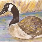Canada Goose by Lynda Earley