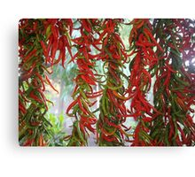Strung and Hanging Red and Green Chili Peppers Drying Canvas Print