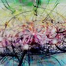 Deform To Form A Star by Linda Sannuti