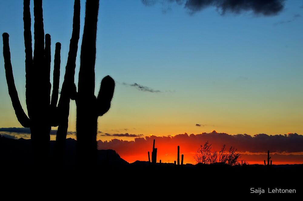 An Arizona Sunrise  by Saija  Lehtonen