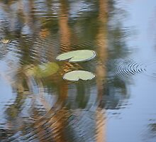 Lilly pads in rippling water by cathywillett