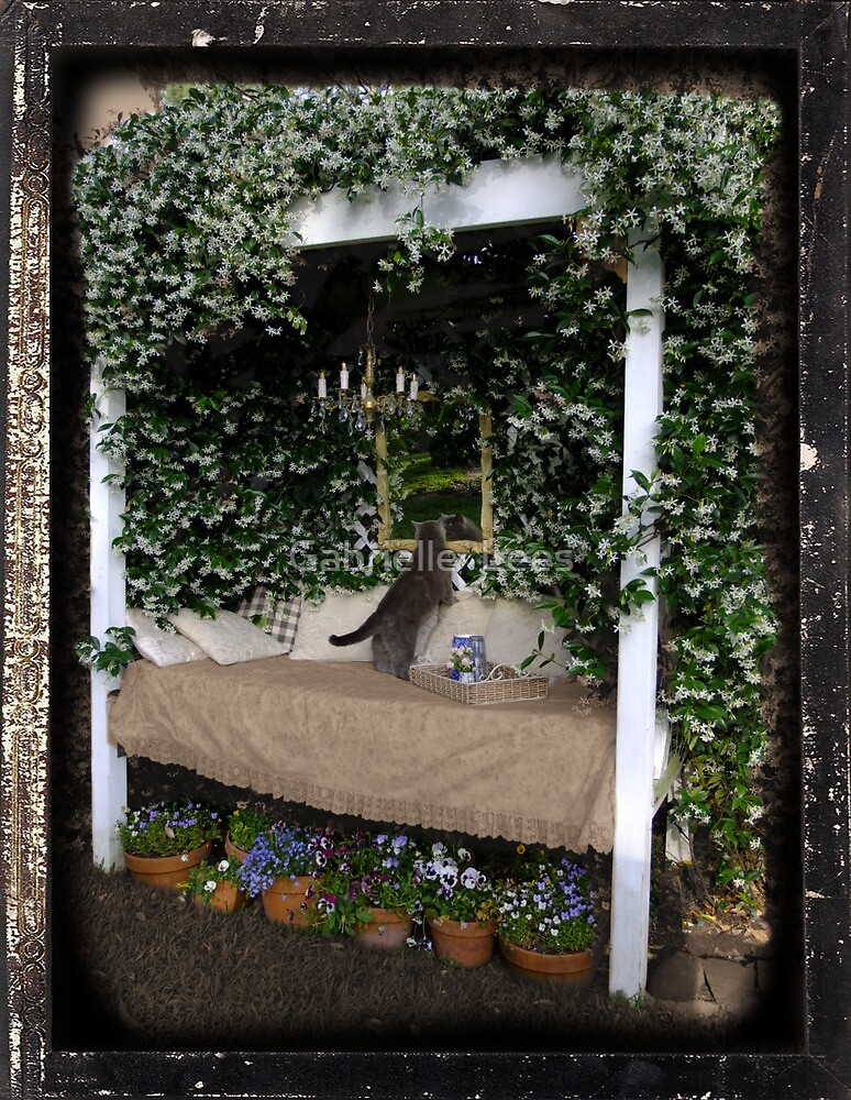 Star Jasmine Covering The Day Bed by Gabrielle  Lees