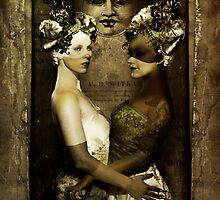 The Robber Bride Moon I by InsectsAngels