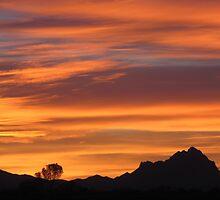 Southern Sunset  by Kimberly Chadwick