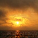 FIre Sunset, Fire Island, NY by chipster