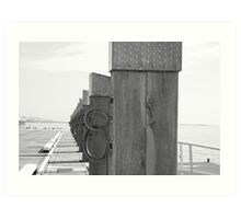 Geelong water front rings  Art Print