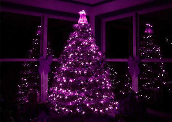 PURPLE CHRISTMAS by Lori Deiter