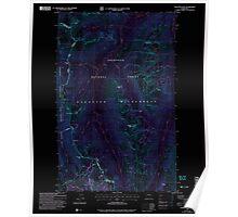 USGS Topo Map Washington State WA Pasayten Peak 243083 2002 24000 Inverted Poster