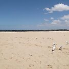 Altona Beach by wyvernsrose