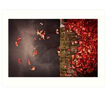 Red leaves and water Art Print