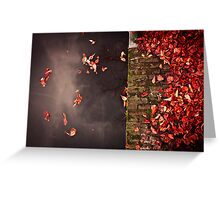 Red leaves and water Greeting Card