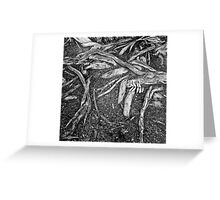 Cone and Leaf, Phoenix Park in Dublin Greeting Card