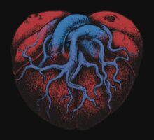 Love Heart by beanarts