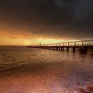 Shining Through by John Morton