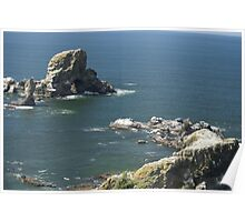 Sea Lion Rocks, Oregon Poster