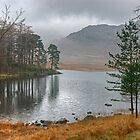 The November Tarn by VoluntaryRanger
