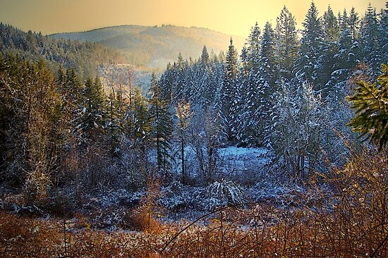 A Touch Of Snow by Charles & Patricia   Harkins ~ Picture Oregon