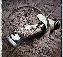 Light Bulb by MarkusWill