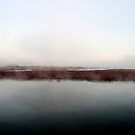 misty totton by DARREL NEAVES