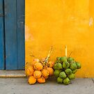 Fresh coconuts in the street of Cartagena, Colombia by javarman