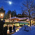 Moonlight in Butchart Gardens (Carol Singers) by AnnDixon