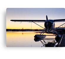 Sunset and a Beaver Canvas Print