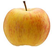 Multicoloured apple by fotorobs