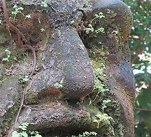Olmec Head - Cabeza Olmeca, Puerto Vallarta, Mexico by PtoVallartaMex