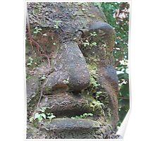 Olmec Head - Cabeza Olmeca, Puerto Vallarta, Mexico Poster