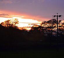 Sundown Over Esholt Woods by SparklesDarkly