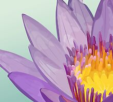 Flower of lotus by BANDERUS MARTIN