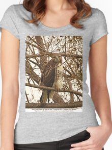 Red-Tailed Hawk as wise as Owl Women's Fitted Scoop T-Shirt