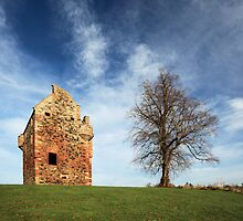 Greenknowe Tower and lone tree by Grant Glendinning