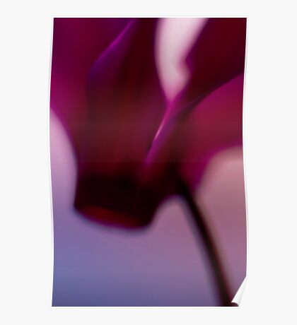 Mothers Flowers Poster