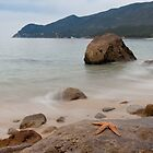 Starfish resting on a rock at peaceful seascape by Eduardo Ventura