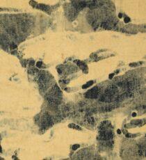 Water Camouflage  Sticker