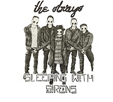 we are the strays by shvn