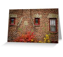 Symmetry in Suburbia Greeting Card