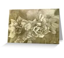 Natures Canvas B&W Greeting Card
