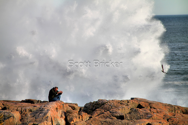'Getting the Shot' by Scott Bricker