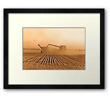 Wheat Harvest: Unloading on the run Framed Print