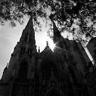 Dark Cathedral by Cameron  Allen Lamond
