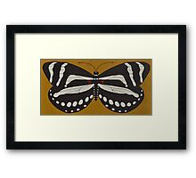 Passion  ( zebra longwing butterfly ) Framed Print