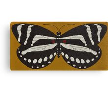 Passion  ( zebra longwing butterfly ) Canvas Print