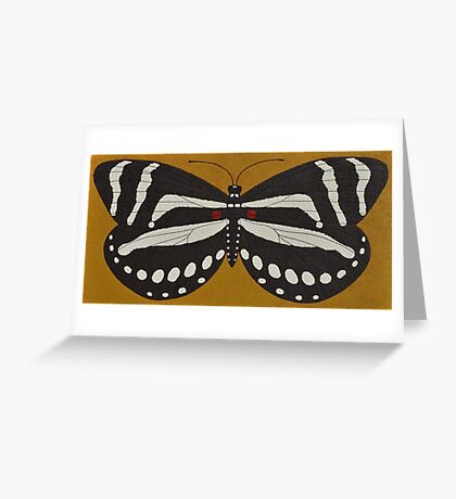 Passion  ( zebra longwing butterfly ) Greeting Card