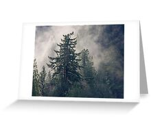 Fog Sun Trees Greeting Card
