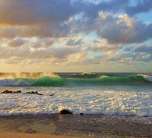 Mery Christmas from Hawaii by jyruff