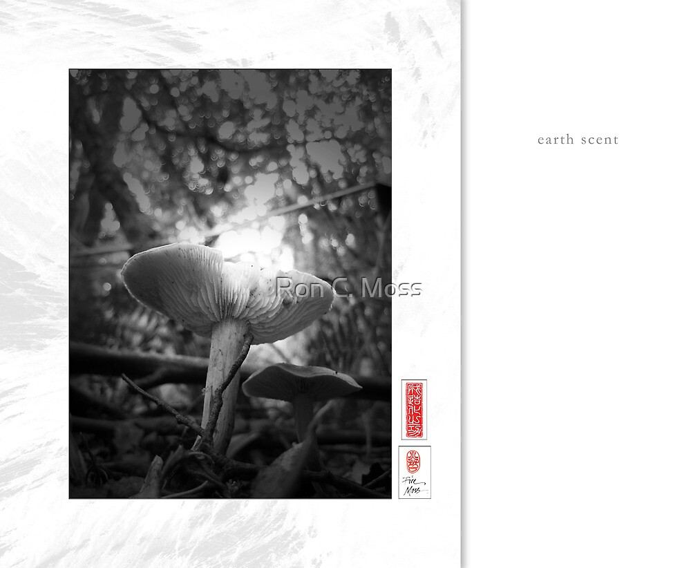 Mindfulness In Monochrome - Earth Scent by Ron C. Moss