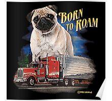 Pug Born to Roam Poster