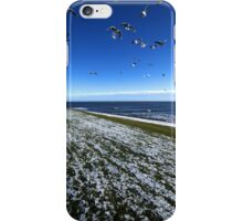 Birds Attack iPhone Case/Skin